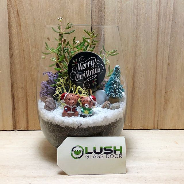 Customized Holly Jolly Succulent Terrarium by Lush Glass Door Singapore