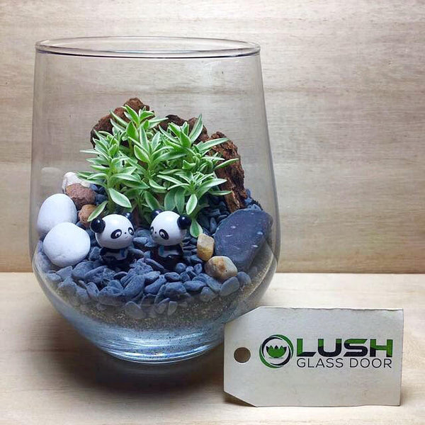 Customised Pandas In The Woods Themed Succulent Terrarium by Lush Glass Door Singapore