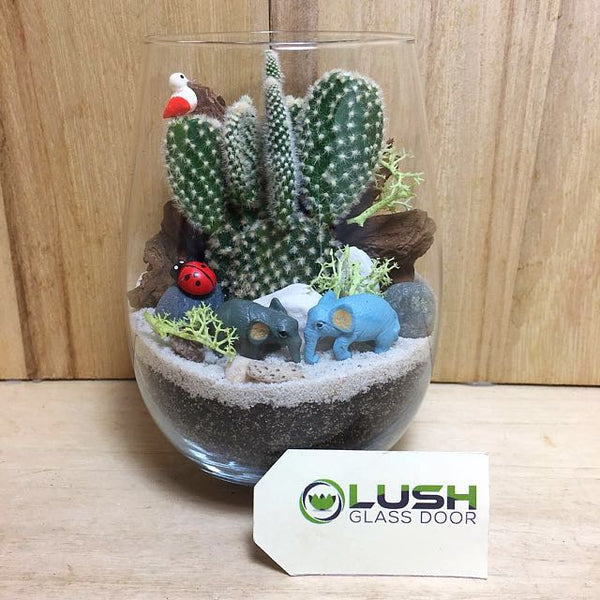 Customized Lane Succulent Terrarium by Lush Glass Door Singapore