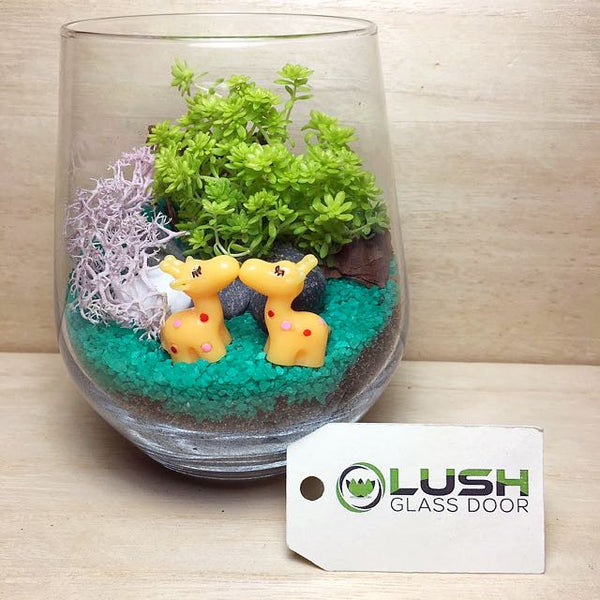 Customised Loving Giraffes Themed Succulents Terrarium by Lush Glass Door Singapore