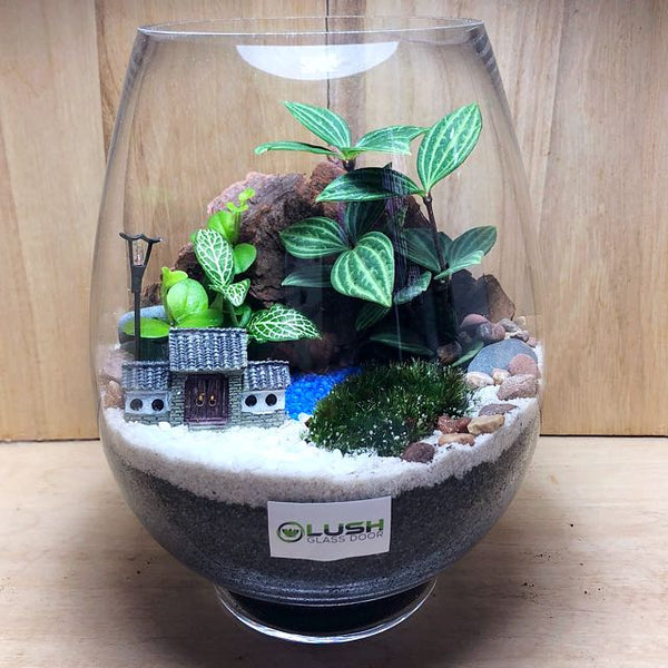 Customized Oasis Scenic Fittonia/ Pilea/ Moss Terrarium by Lush Glass Door Singapore