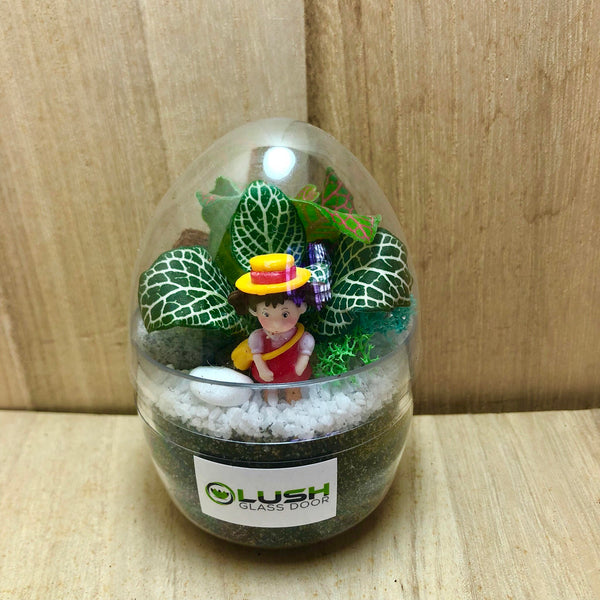Mini Egg Shaped Terrarium by Lush Glass Door Singapore
