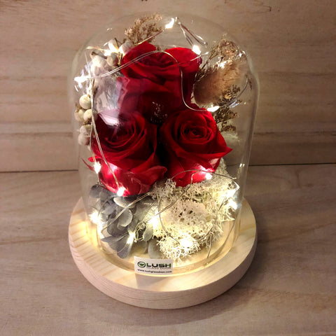 Kelsey Eternal Rose Preserved Flower Glass Dome (Fairy Light)