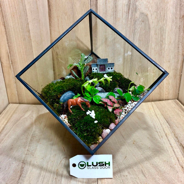 Customized Unstoppable! Square Geometric Terrarium by Lush Glass Door Singapore