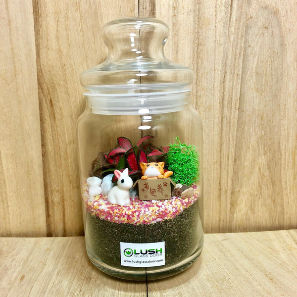 Customized Edison Fittonia Story Jar Terrarium by Lush Glass Door Singapore