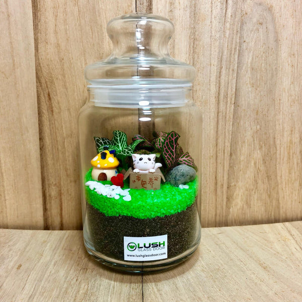 Customized Ashlyn Fittonia Story Jar Terrarium by Lush Glass Door Singapore