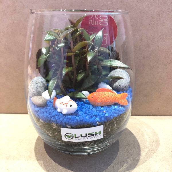 Customized Hallie Auspicious Succulent Terrarium by Lush Glass Door Singapore