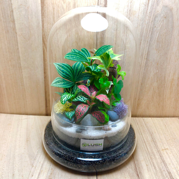 Customized Passion Mini Forest Dome Terrarium (L) by Lush Glass Door Singapore