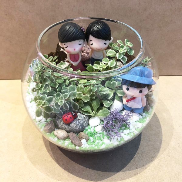Customized Maddison Succulent Bowl Terrarium by Lush Glass Door Singapore