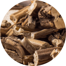 Slippery elm root