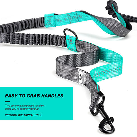 elastic sections to the lead for comfort and safety