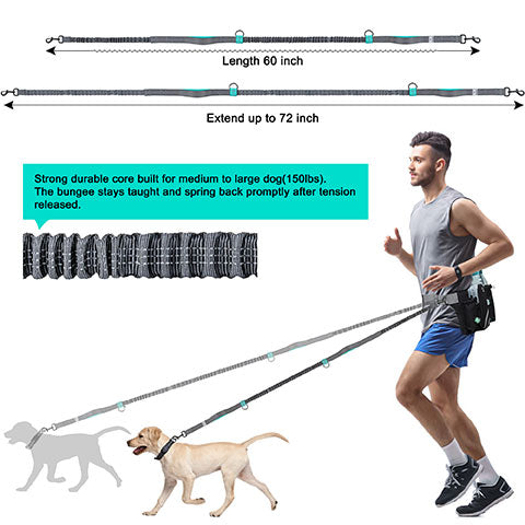 long lead with stretch. superb hands free, dog running lead set