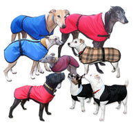 the trendy whippet, greyhound, sighthound and whippet coats for all weathers and seasons