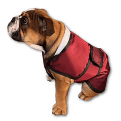 english bulldog coat with underbelly protection
