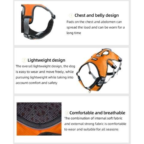 whippet puppy harness to large sighthound harness - details