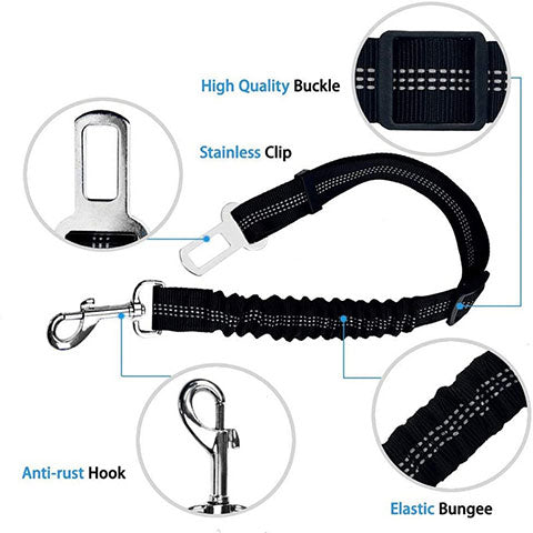 How to attach dog collar or harness to a car seat belt clip fastener