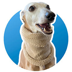 Wool whippet snood - two colours - neck warmer / scarf
