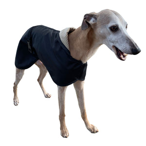 summer whippet coat. lightweight black whippet coat with reflective option for safety