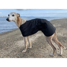 Load image into Gallery viewer, Whippet by the sea wearing a lightweight whippet rain coat