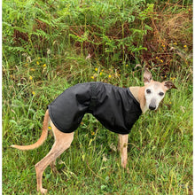 Load image into Gallery viewer, sighthound coat for summer warm weather. lightweight black whippet coat