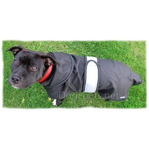 from above - staffordshire bull terrier coats