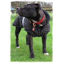Load image into Gallery viewer, 2 in 1 ultimate dog coat on Tia in black