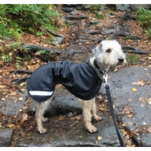 Coats for Bedlington Terriers