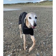 Load image into Gallery viewer, joey the whippet on the beach wearing a beautify whippet coat from drydogs.co.uk