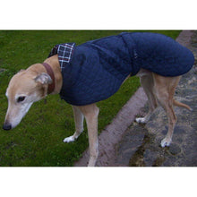 Load image into Gallery viewer, Quilted Greyhound / Whippet Coat