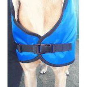 our greyhound coats have adjustable clip release fasteners - front view