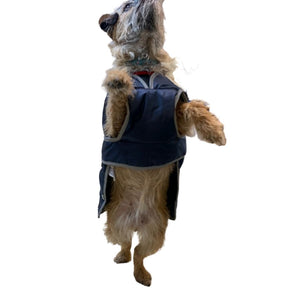 STORM GUARD Dog Coat with Harness Hole