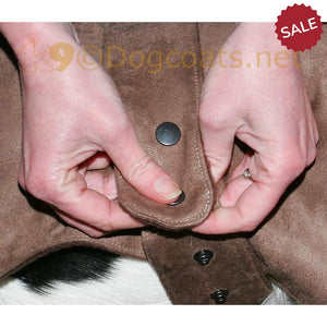 Dog-coat-with-Press-stud-fastener | DryDogsUK