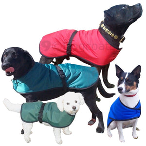 dog coat with warm fleece lining combined