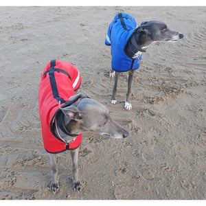 Luna and Charlie on the beach in their reflective whippet coats. fleece lined ideal for winter dog coats