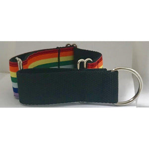 Martingale Collar - Rainbow - 2in Wide