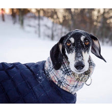Load image into Gallery viewer, Dog in the snow wearing his waterproof quilted whippet/greyhound coat