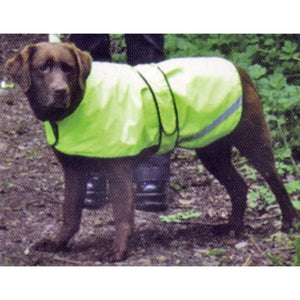 Labrador safety dog coat for summer | DryDogs