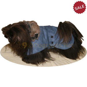 Pekingese dog coat in blue with press studs | DryDogs