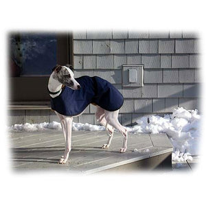 whippet coat in navy blue. made in the uk and send to snowy America