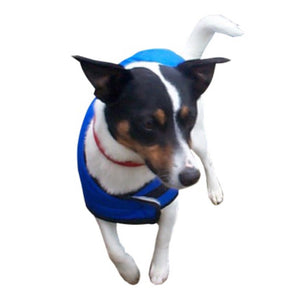trendy fashion dog winter wear with clip close fastener