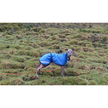 Load image into Gallery viewer, coats for whippets uk. hard wearing fleece lined whippet jackets and raincoats