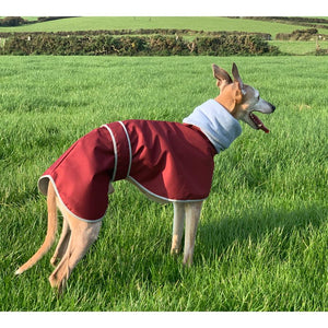 Waterproof whippet coats uk with built in snood / head cover. Full neck coverage whippet coats uk.