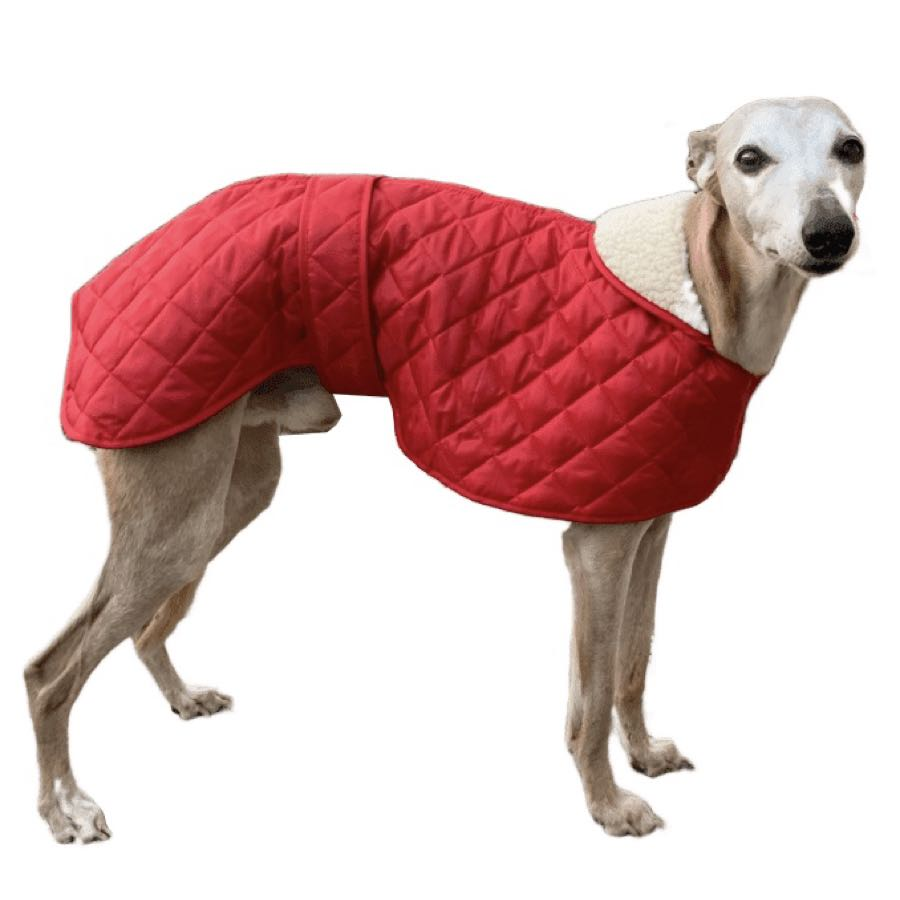 Red quilted whippet/greyhound dog coat. Velcro fastening front and waist