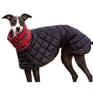 Quilted Waterproof Greyhound Coat with High Collar Design Your Own