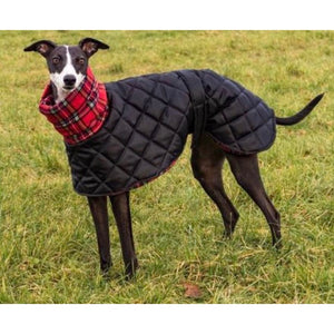 Black padded whippet coat with red tartan fleece lining