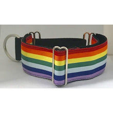 Load image into Gallery viewer, Martingale Collar - Rainbow - 2in Wide