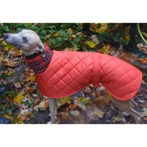 red quilted waterproof windproof whippet coat. Ideal for the cold weather of winter months