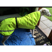 Load image into Gallery viewer, Reflective Greyhound Coats. High Visibility.