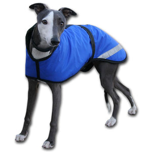 royal blue whippet rain mac made in the uk to order by Kellings Dog Coats