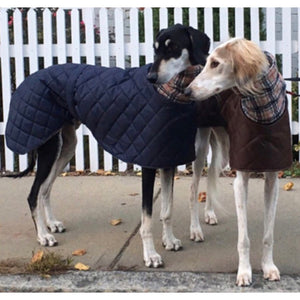 Saluki coats - brown and navy with cream check